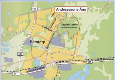 Andreassons äng 1